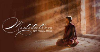 Tổng Hợp Liên Kết Theravada Trên Các Kênh Khác
