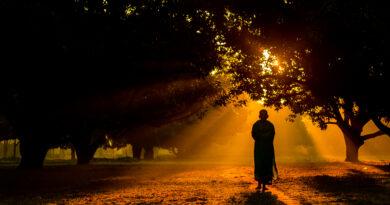 Link Một Số Nguồn Tìm Hiểu Tam Tạng Pali & Phật Giáo