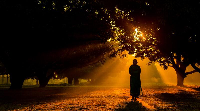 Dhamma 9