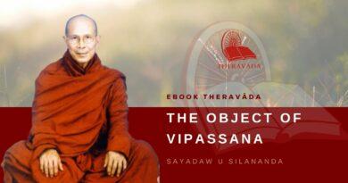 THE OBJECT OF VIPASSANA - SAYADAW U SILANANDA