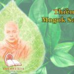 About Mogok Sayadaw