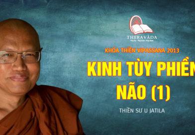 Videos 15. Kinh Tùy Phiền Não (1) | Thiền Sư U Jatila – Khóa Thiền Năm 2013