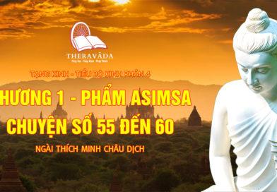 Videos 16. Chương 1 – Phẩm Asimsa – Chuyện Số 55 Đến 60 | Ngài Thích Minh Châu – Tiểu Bộ Kinh Phần 4