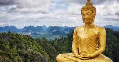 buddhaflip 1024x683 1