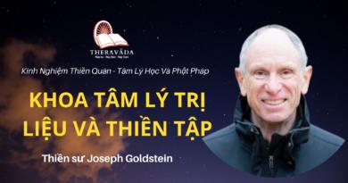 Khoa-tam-ly-tri-lieu-va-thien-tap-Joseph-Goldstein-Theravada