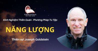 Năng-luong-Joseph-Goldstein-Theravada