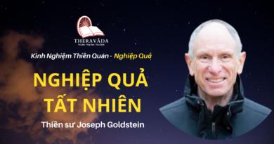 Nghiep-qua-tat-nhien-Joseph-Goldstein-Theravada