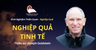 Nghiep-qua-tinh-te-Joseph-Goldstein-Theravada