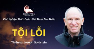 Toi-loi-Joseph-Goldstein-Theravada